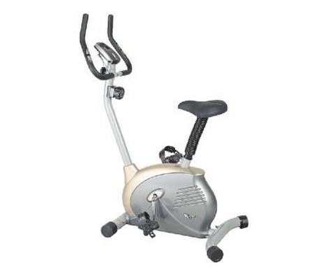 Ποδήλατο γυμναστικής Pegasus AL-402B